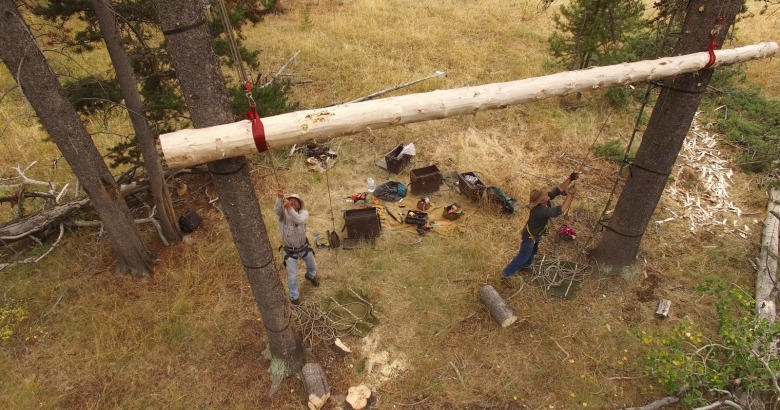 A drone camera captures Steve Primm and a colleague raising a new bear pole used by outfitters and hunters to keep their food out of reach in grizzly country.  Photo courtesy Steve Primm of People and Carnivores