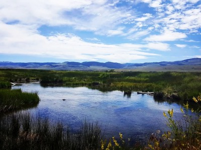 O'Dell Creek in the Madison Valley of Montana