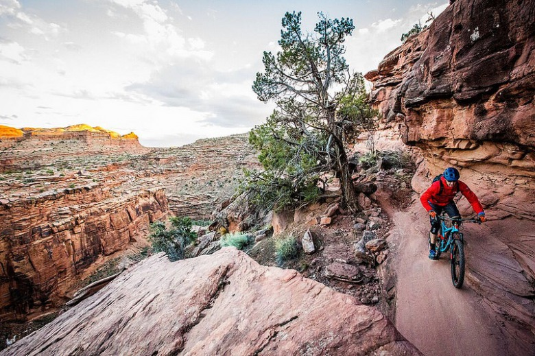 Moab, Utah is the mountain biking capital of the inner U.S. West and a site where industrial-strength biking occurs on federal Bureau of Land Management tracts and other public lands.  But is this kind of use—where speed is a factor— compatible with a wild region like the Greater Yellowstone Ecosystem that has grizzly bears, sensitive areas used by migratory ungulates and both bighorn sheep and mountain goats in the Forest Service high country? Moab has none of these high wildlife values in play. Mountain biking use is already ratcheting up in both Greater Yellowstone's front and backcountry.  Photo courtesy BLM