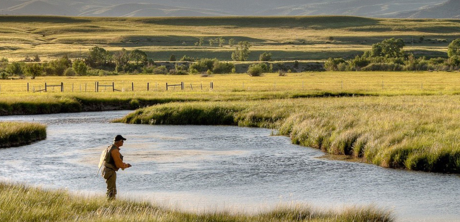 O'Dell Creek in the Madison Valley, photo courtesy River Design Group (www.riverdesigngroup.com)