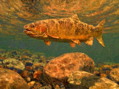 "Do we fish for the photograph? Painting, ""High Country Cutthroat"", by Michael Stidham"