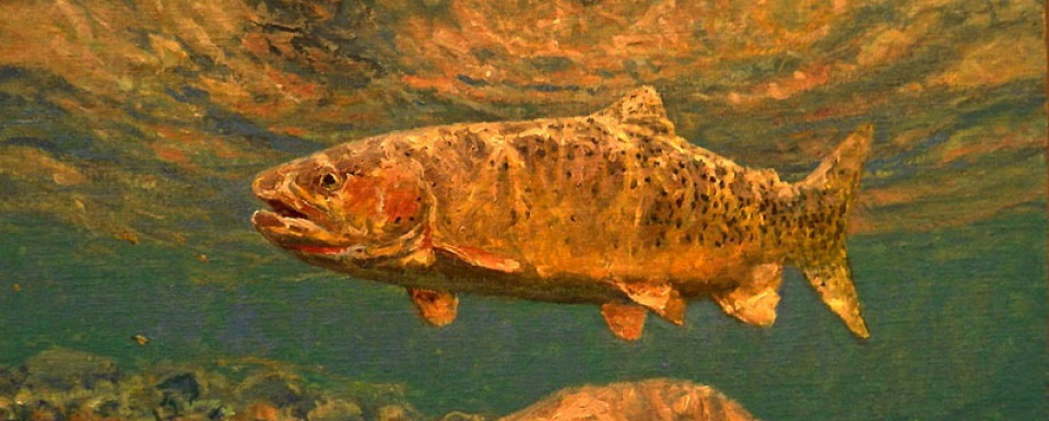 """High Country Cutthroat,"" a painting by Michael Stidham"