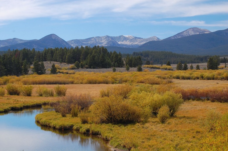 Shoring up the northwestern tier of Greater Yellowstone, the Beaverhead-Deerlodge National Forest  represents a key part of the ecosystem's connectedness to wildlands farther north.  Image courtesy imgur user Fredlyfish4