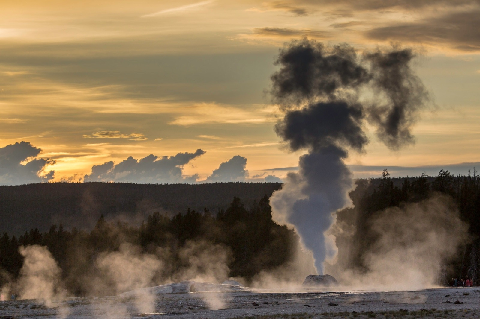 Lion Geyser at sunset, Yellowstone National Park. Photo courtesy Neal Herbert/NPS