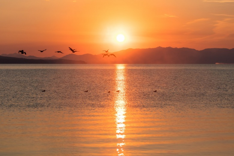 Wherever you are, a natural escape is nearby. Canada Geese flying through the sunrise on Yellowstone Lake.  NPS / Jacob W. Frank