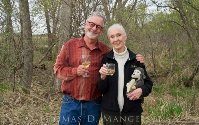Mangelsen and his friend, Jane Goodall, have been outspoken critics of the proposed grizzly bear hunt. Both applied for a bear hunting tag. Goodall will be in Jackson Hole this September around the time that the state's grizzly hunt is scheduled to commence. Photo courtesy Tom Mangelsen