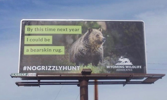 Billboard message put up by Wyoming Wildlife Advocates in Cody, Wyoming.