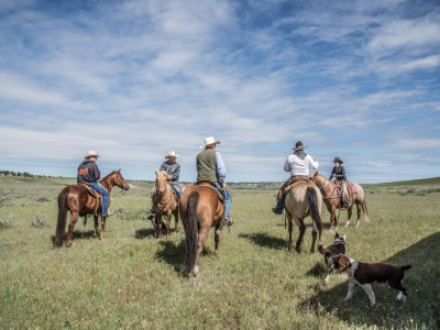 Cowboys set off to check their livestock.