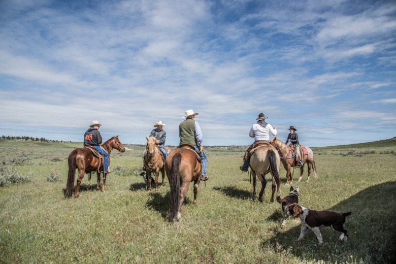 Cowboys set off to check their livestock on the high rolling plains. They do it for real. Photo by Alexis Bonogofsky