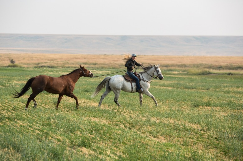 Sadie Johnsons exercises her horses, Gray and Annie,  for the Lewistown Rodeo at her family's U-Cross Ranch.  Photo by Louise Johns