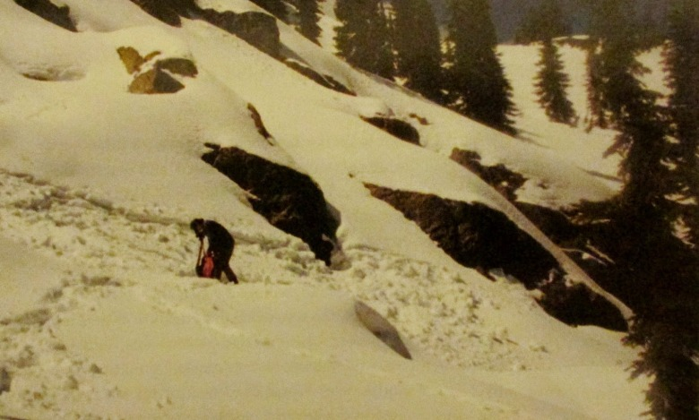 In 2001, the author took part in the Greater Grizzly Search to determine if grizzlies had found their way into the Selway Bitterroot Ecosystem. As part of the quest, Stalling climbed into a bear den and, in terms of evidence, came out empty handed.  Photos courtesy David Stalling