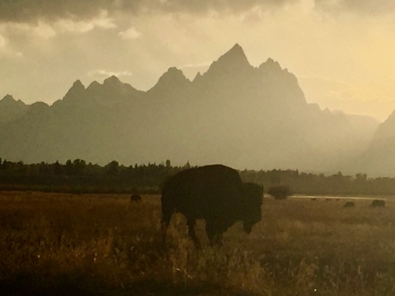 What symbols, sites and sensations visit you in your dreams?  Photo of twilight in Grand Teton National Park by Todd Wilkinson