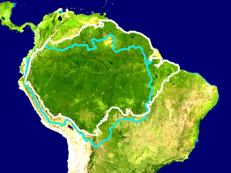 The Amazon River and Forest Basin covers a huge swath of land. When healthy, the forest functions as a carbon sink but when trees are dying and drying from heart or toppled it has a reverse effect.  Images courtesy Wikipedia Commons
