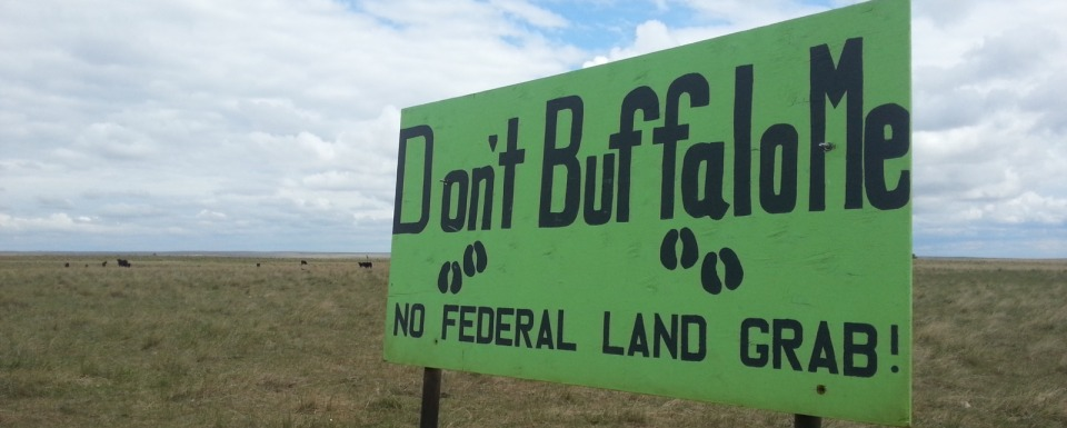 A grassroots expression on the prairie