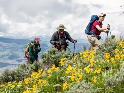 Summer hikers in the high country