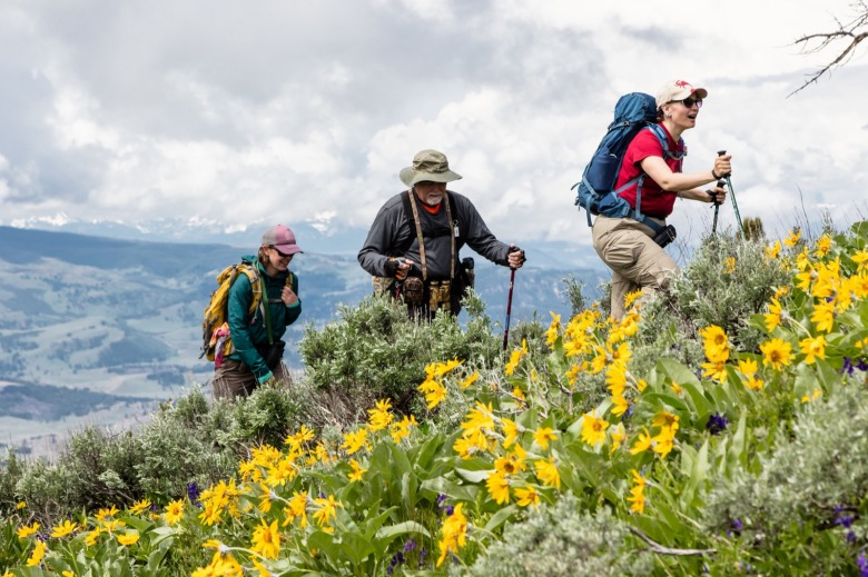 Summer hikers trek through a sub-alpine meadow south of Bozeman. Photo courtesy Jacob W. Frank/NPS