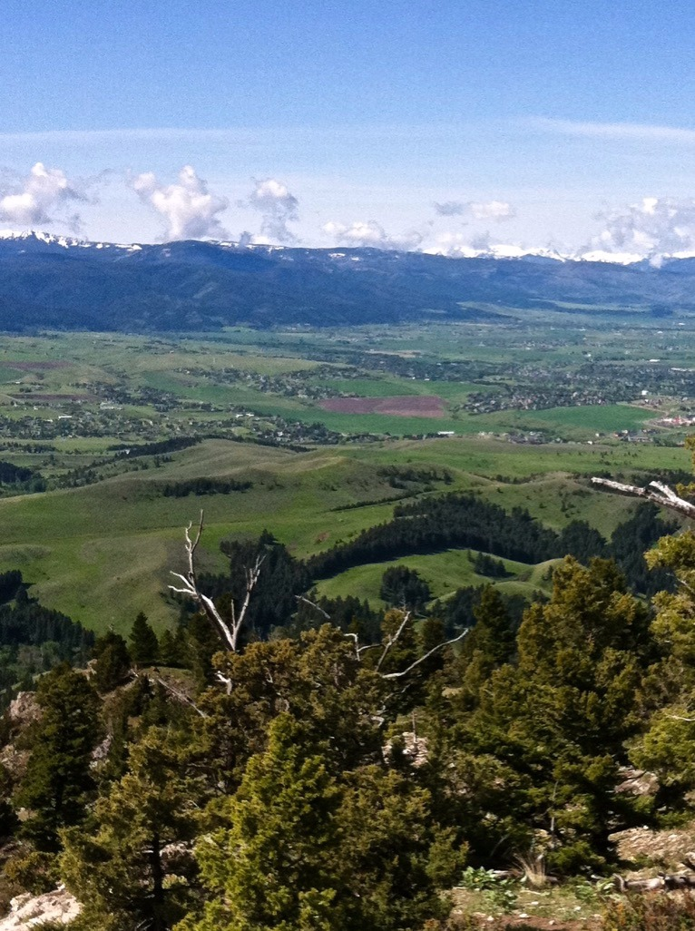 From the top of the Bridger Mountains, the Gallatins rise in the distance at the south end of Bozeman. In-between those ranges, sprawling development is rapidly filling in, one harbinger of how wildlands and wildlife are going to face increasing human pressure in the future. Photo by Todd Wilkinson