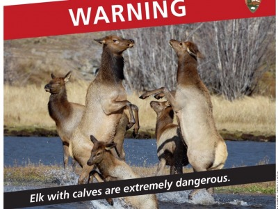 A Yellowstone warning circulated on social media