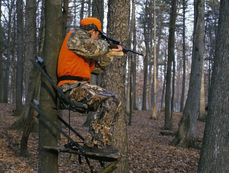 A hunter in the deer stand. Photo courtesy Steve Maslowski/US Fish and Wildlife Service