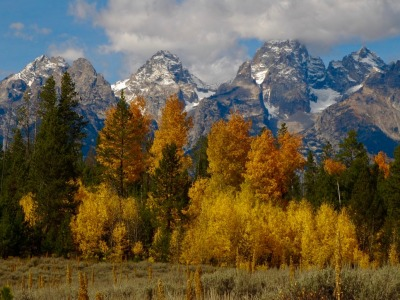 The Tetons with fall colors