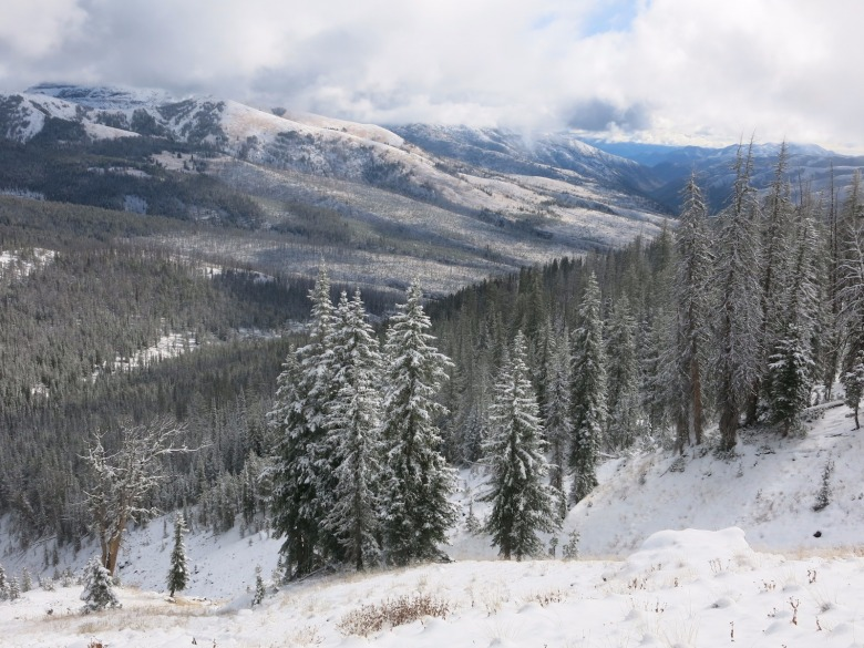 The North Absaroka Wilderness is powder wonderland for backcountry skiers and boarders.  While winter landscapes appear vacant and there for the leaving of tracks, Burritt encourages us to gain an ecological understanding of places we're entering. He reminds that they're home to something and likely barely getting by.  Photo by Todd Burritt