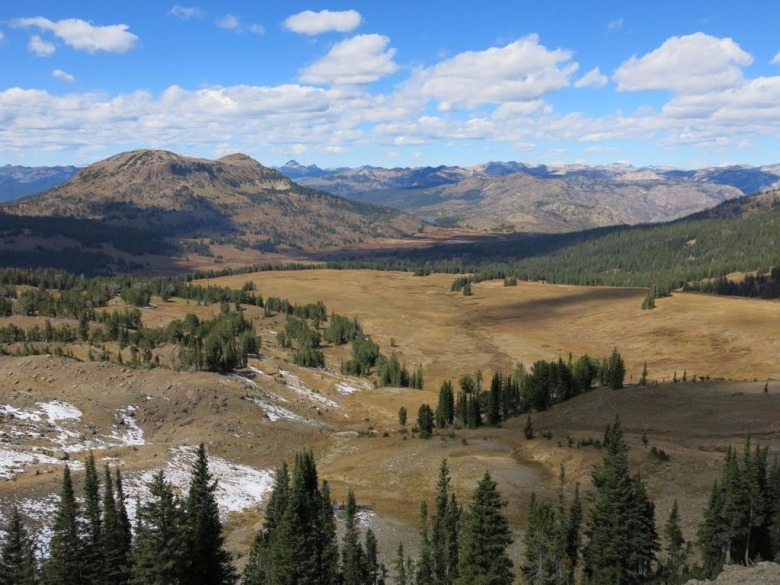 A view of the North Absaroka Wilderness which for its wildlife diversity is compared to the Buffalo Horn and Porcupine drainages in the Gallatin mountains. Photo by Todd Burritt