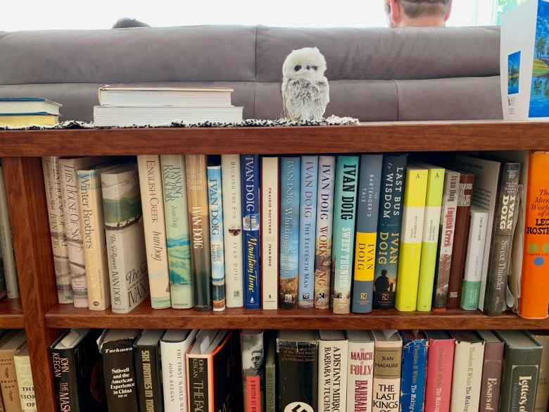 A bookshelf in Ivan and Carol Doig's living room just outside of Seattle.  Photo by Todd Wilkinson
