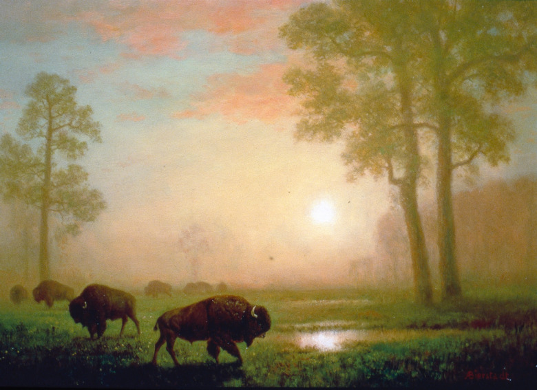 """Bison on the Montana Plains"" by Albert Bierstadt.  A signature of Ted's Montana Grills are fine art reproductions of classic 19th century paintings portraying the West, part of Turner's personal art collection. Photo courtesy Ted Turner"