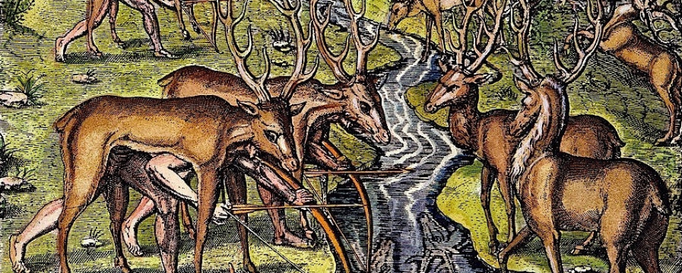 Drawing of deer hunt, late 16th century