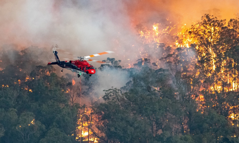 In Australia entire towns are burning along with forests and crucial habitat for wildlife. Photo: State Government of Victoria Handout/EPA