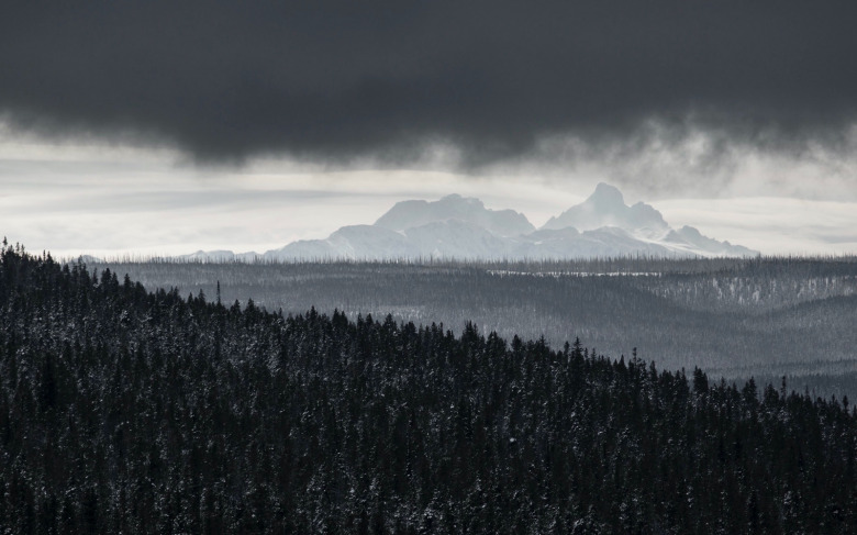 The Tetons rising above Yellowstone's southern horizon. Photograph courtesy Neal Herbert/NPS