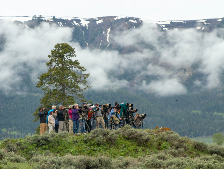 Wolf and grizzly watchers in the Lamar Valley of Yellowstone National Park.  Photo courtesy Diane Renkin/NPS