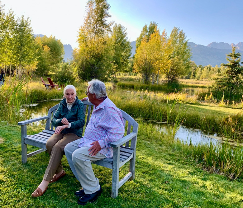 Bonded by friendship and conservation: Jane Goodall and Tom Mangelsen reminisce about their trip to Gombe Stream National Park in Tanzania during Goodall's visit to Jackson Hole in autumn 2019. Photo by Todd Wilkinson