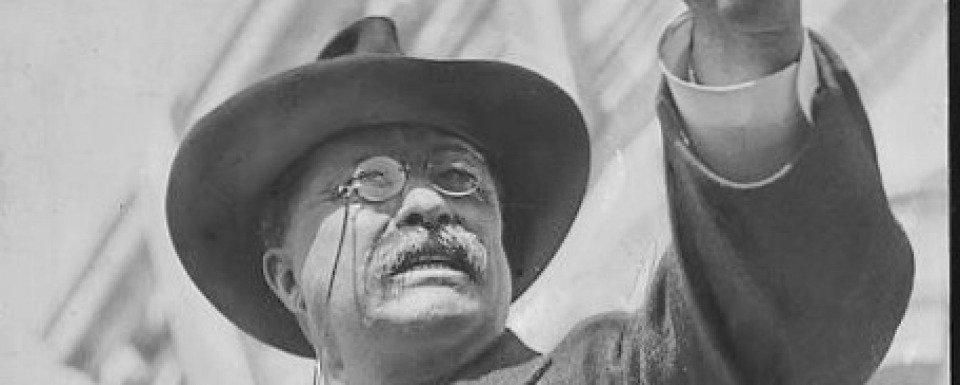 How do you assess Roosevelt's legacy?