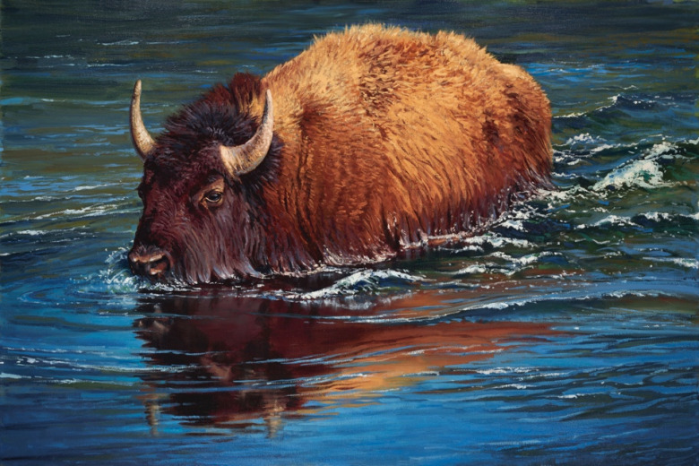 """Making Waves,"" a painting of a Yellowstone bison by John Potter (johnpotterstudio.com)"