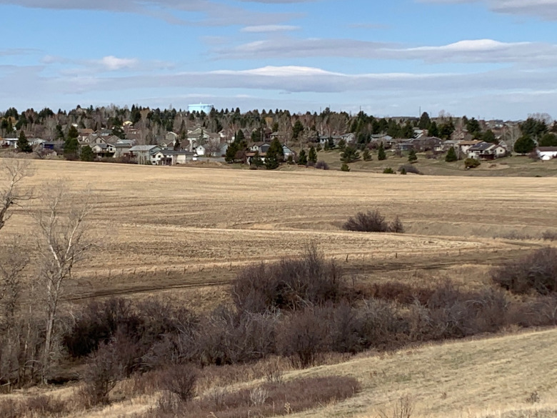 From this view it looks like the advance of urban Bozeman stops on a hard line but it's misleading. Were one to turn 180 degrees in the other direction, the view would reveal islands of rural subdivisions in Gallatin County that already have displaced wildlife. The impacts will really take hold as infill occurs and migration corridors for species like elk are lost. This same scenario exists in valleys throughout Greater Yellowstone.  Photo by Todd Wilkinson